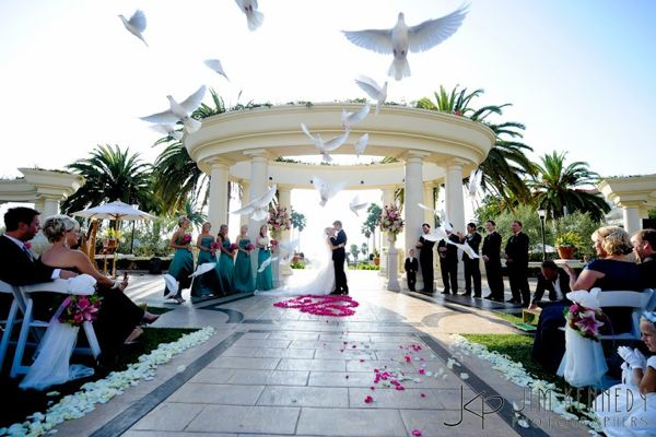 For More Information On Weddings At The St Regis Monarch Beach Resort Visit Their Official Website