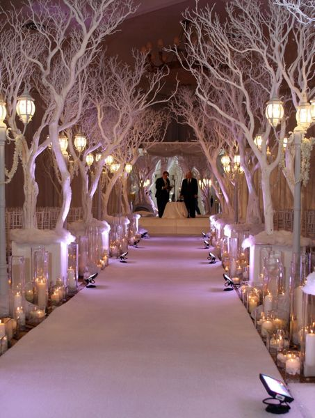 WinterWonderland-wedding-trees