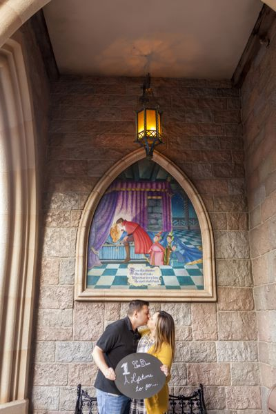 View More: http://jaimedavisphoto.pass.us/lindsaynathandisney