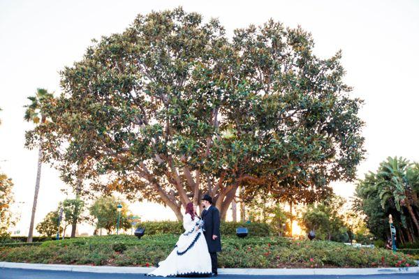 disneyland wedding-5436-2