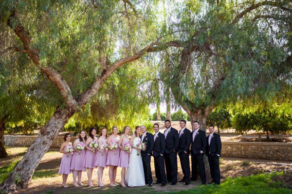 View More: http://jaimedavisphoto.pass.us/mrandmrskooi